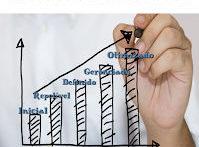 Em qual nível de maturidade em gerenciamento de projetos a sua empresa está?